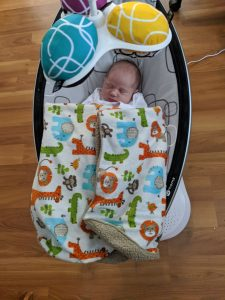 baby in mamaroo